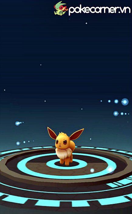 Cách tiến hóa eevee - tiến hóa eevee pokemon go - hướng dẫn chơi pokemon go - hướng dẫn pokemon go - tổng hợp pokemon go - pokecorner - Đổi tên Eevee - Buddy đi 10km